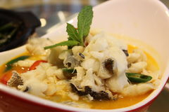 Läcker varm och sur fisk i soppa fotografering för bildbyråer