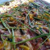 Läckerbit av pizza med skinka, söt peppar och purjolöken Arkivfoto