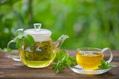 Läckert grönt te i en härlig glass bunke på tabellen Royaltyfri Fotografi