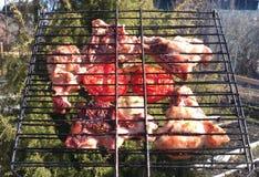 Läckert grillat kött med tomater Fotografering för Bildbyråer