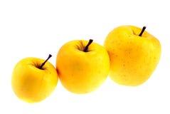 läckert guld- för äpplen Arkivbilder