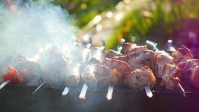 Läckert kött för grillfest som lagas mat på gallret Ett grillfestparti Grisköttstycken av kött som grillas på en öppen brand Arkivbild