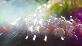 Läckert kött för grillfest som lagas mat på gallret Ett grillfestparti Grisköttstycken av kött som grillas på en öppen brand arkivfilmer