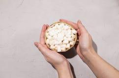 Läckert kaffe med mjölkar och marshmallower royaltyfri fotografi