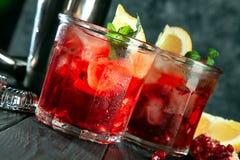 Läckert slut upp sikt på den röda alkoholiserade coctailen Exponeringsglas med is-, dryck-, citron- och stångredskap på mörk träb royaltyfria foton