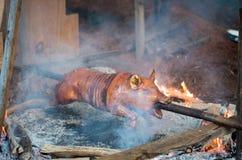 Läckert vegitarian helvete Fotografering för Bildbyråer