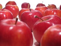 läckra äpplen Royaltyfria Bilder