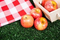 Läckra äpplen på gräset fotografering för bildbyråer