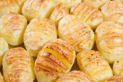 Läckra bakade potatisar Fotografering för Bildbyråer