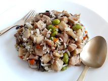 Läckra bakade ris med taroen arkivfoton