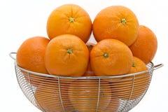 läckra florida apelsiner royaltyfria bilder
