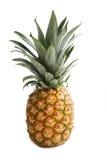 läckra frukter för ananas Arkivfoton
