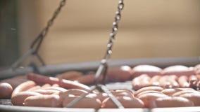 Läckra grillade grisköttkorvar arkivfilmer