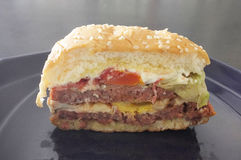 Läckra hamburgare med nötkött, tomaten och ost, avsnittsiktshamburgare fotografering för bildbyråer