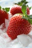 läckra jordgubbar royaltyfri foto