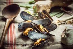 Läckra kryddade välsmakande marin- musslor Royaltyfria Bilder