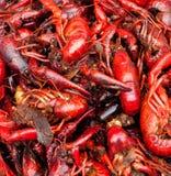 Läckra kryddiga cancer för röd matvaruaffär Royaltyfri Bild