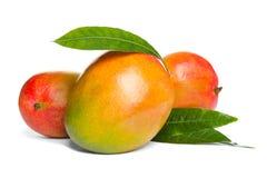 Läckra mogna mango på vit tropisk frukt arkivfoto
