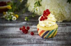 Läckra muffin med bär Fotografering för Bildbyråer