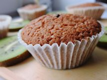 Läckra muffin med olika snitt av saftig frukt Fotografering för Bildbyråer