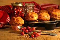 läckra muffiner för cranberry arkivfoton