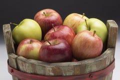 Läckra och färgrika äpplen i en korg Royaltyfri Bild