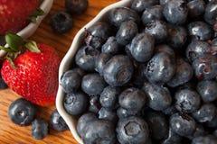 Läckra suckulenta blåbär Royaltyfri Bild