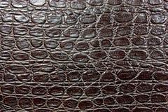 läder Royaltyfria Bilder