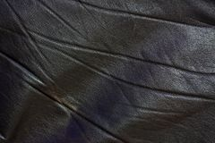 läder Royaltyfri Fotografi