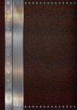 Läder & rostfritt stål royaltyfri illustrationer