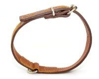 Läderhundhalsband Arkivfoto