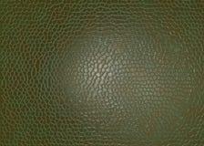 Lädermaterial Royaltyfri Foto