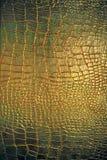 läderreptiltextur Royaltyfri Bild