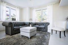 Lädersoffa i ljus vardagsrum royaltyfria foton