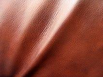 lädertextur Fotografering för Bildbyråer