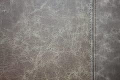 Lädertexturbakgrund Arkivbilder