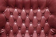 läderupholstery Arkivbilder