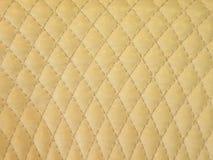läderwhite Royaltyfri Fotografi