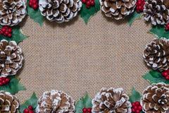 Lägenhet-lekmanna- ram för jul av pinecones, järneksidor och röda bär på lantlig tygbakgrund royaltyfria foton