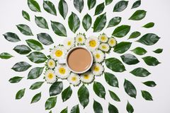 Lägenhet som är lekmanna- av gräsplansida- och blommamodell med koppen kaffe Arkivfoto
