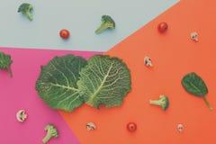 Lägenhet som är lekmanna- av rå grönsaker på abstrakt bakgrund Royaltyfri Fotografi