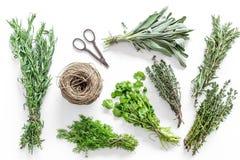Lägenheten lägger med ny örter och grönska för att torka och framställning av kryddauppsättningen på den vita kökbakgrundsmodelle royaltyfria bilder