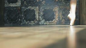 Lägenheter för balett för ballerinadansare bärande Dansa skor stock video