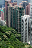 lägenheter Hong Kong Royaltyfri Bild