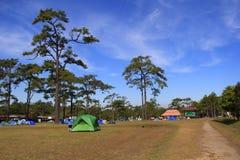 läger Arkivfoto