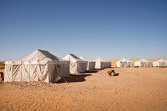 Läger av tält i öknen av Sahara Arkivbild