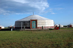 läger ger mongolia Royaltyfri Bild