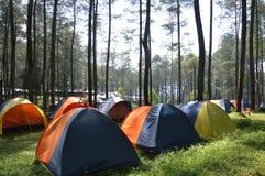 Läger i träna Arkivfoto
