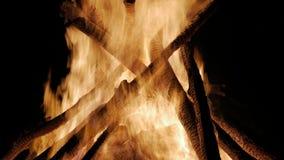 Lägereld i natten Att bränna loggar in nära övre för orange flammor lager videofilmer