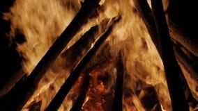 Lägereld i natten Att bränna loggar in nära övre för orange flammor arkivfilmer